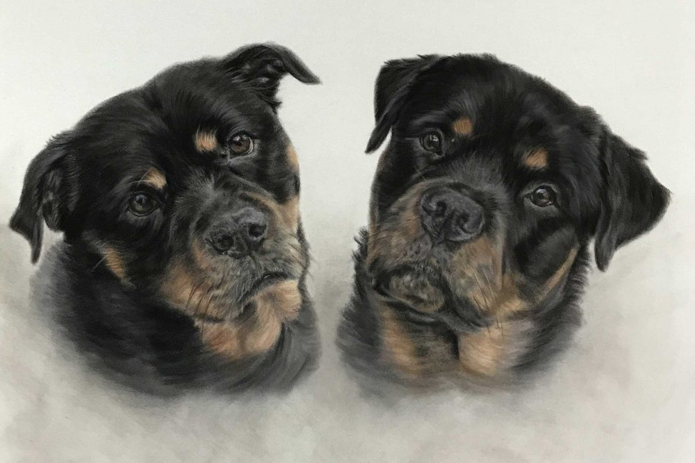 Want To Get A Painter To Paint Your Pet? Read This